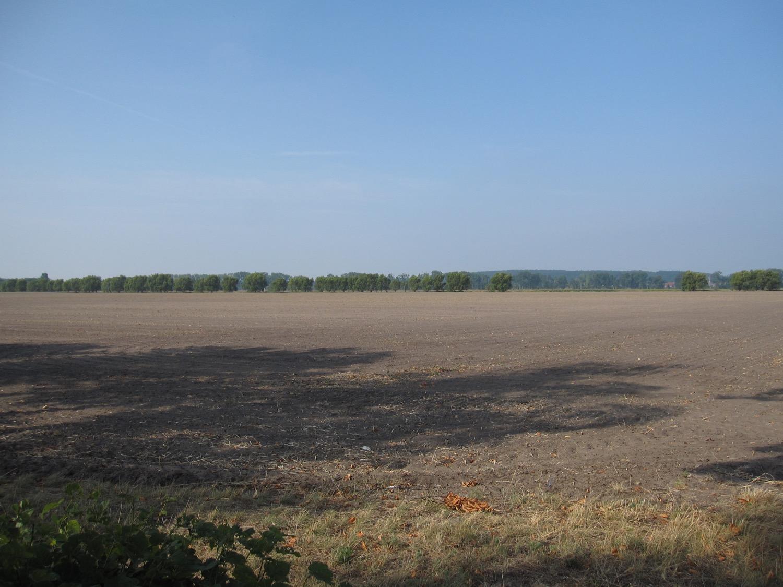 Brandenburg im Sommer