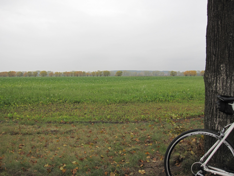 Brandenburg Potsdam-Mittelmark im Herbst