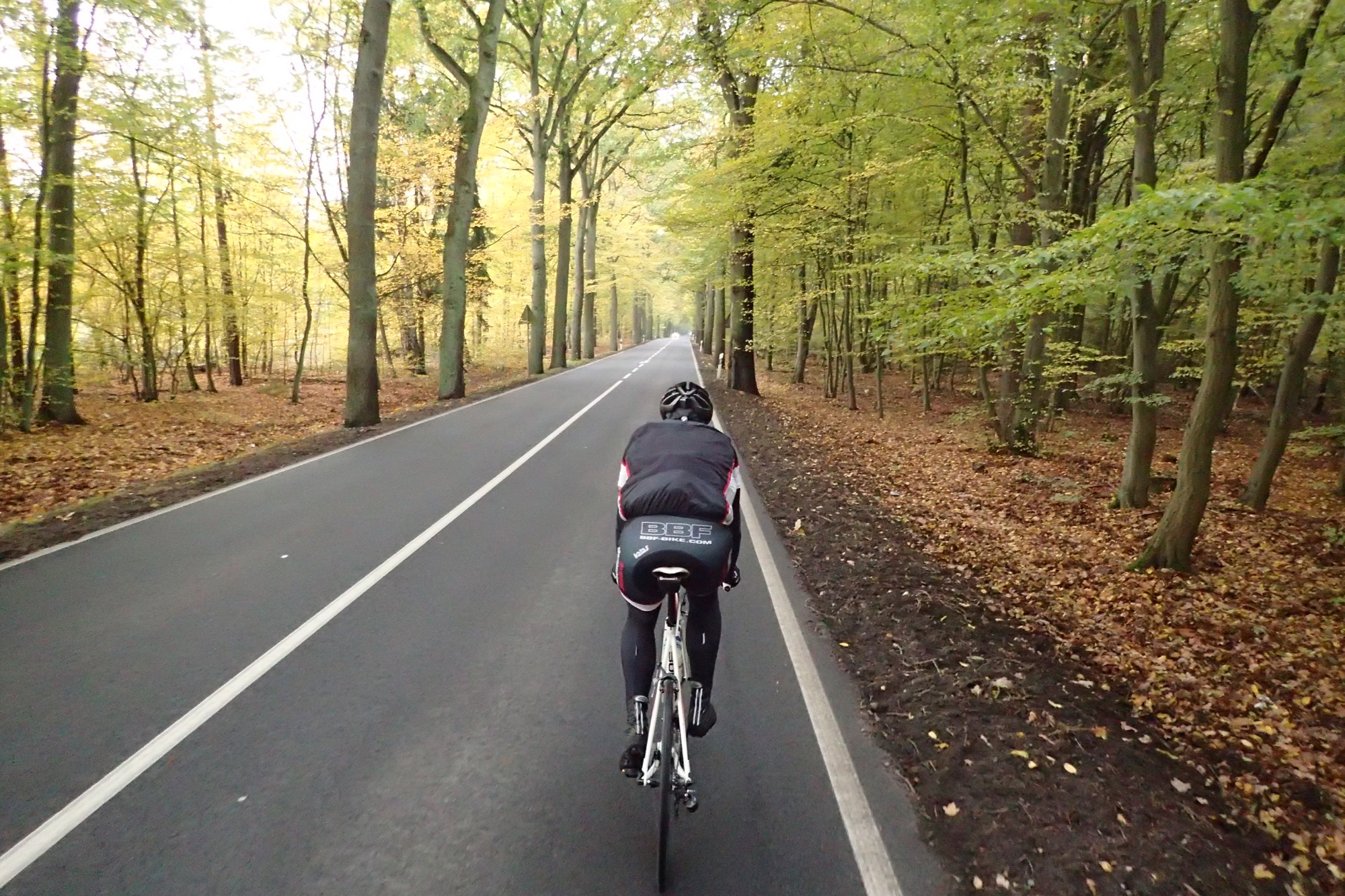 Herbst hinter Germendorf